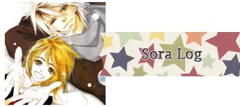 Sora Log